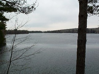 A southerly view of Lower Springy Pond on 04-02-00.