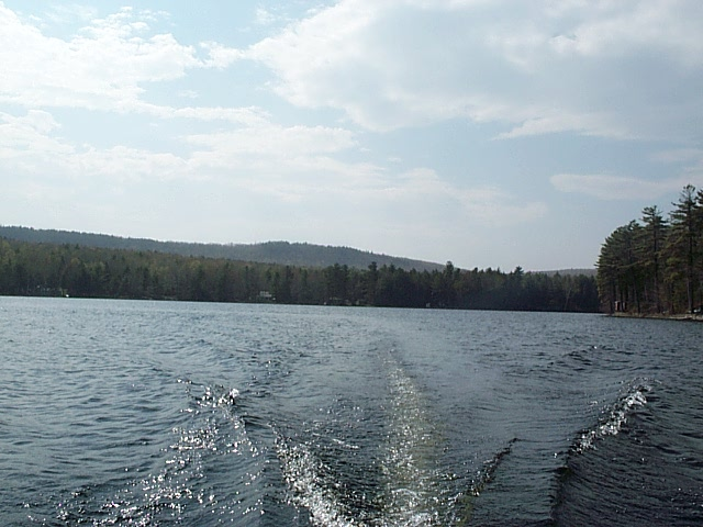 A northwesterly view of Lower Springy Pond on 05-07-00.